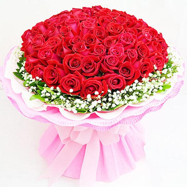 99枝精品红玫瑰, 满天星 栀子叶外围